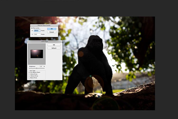 Gorilla-precise-flare-center