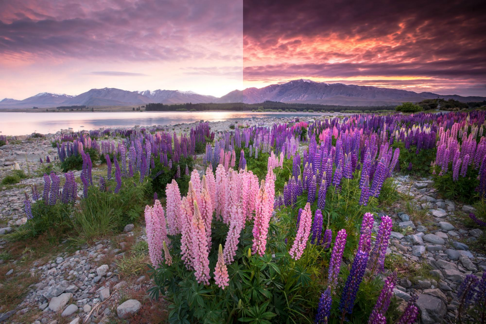 Transform Your Landscape Photography In A Click With Our