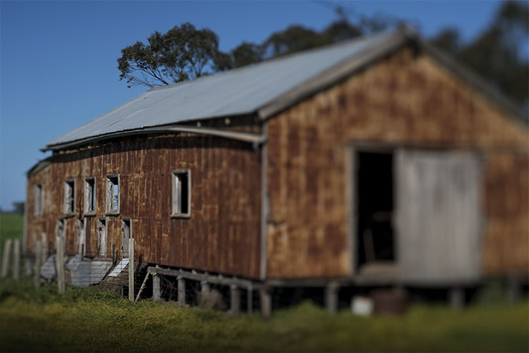 leannecole-lensbaby-old-shearing-shed