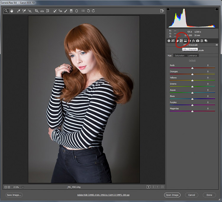 black-and-white-conversions-in-photoshop-ACR-HSL