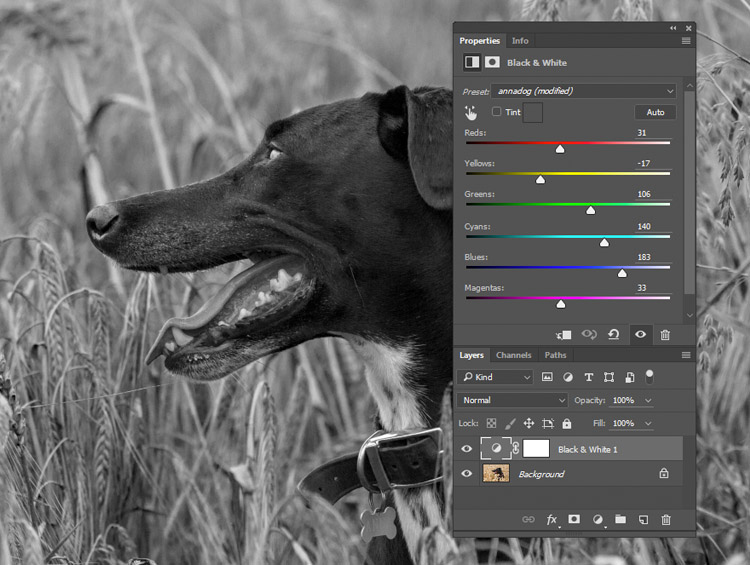 black-and-white-conversions-in-photoshop-blackandwhitelayer-sliders