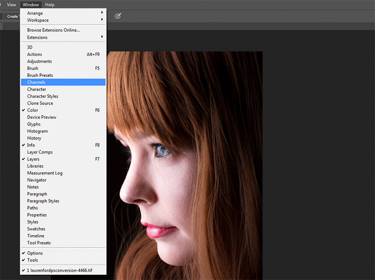 black-and-white-conversions-in-photoshop-channels-window