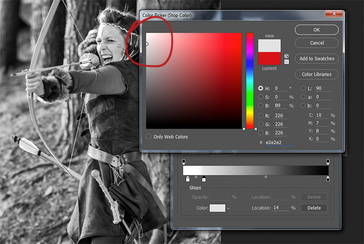 black-and-white-conversions-in-photoshop-gradientmap-newwhitetones