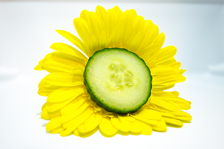 flower-and-cucumber