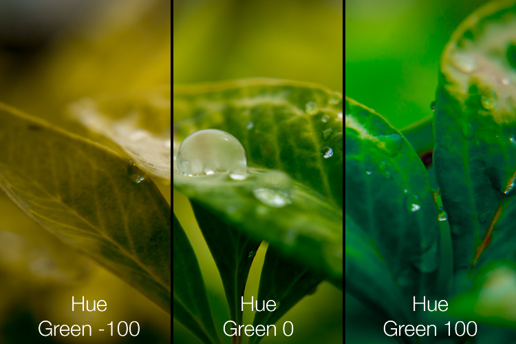 Simply adjusting the green hue can give your nature photos an entirely different look and feel.