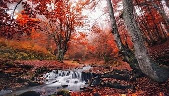 motion-fall-photography07.jpg