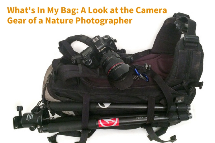 whats-in-my-bag-a-look-at-the-camera-gear-of-a-nature-photographer