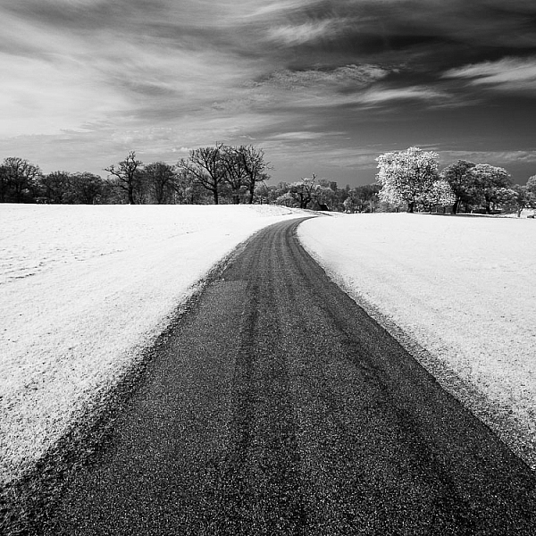 How to Convert a Camera to Infrared for Black and White Landscape Photography 1