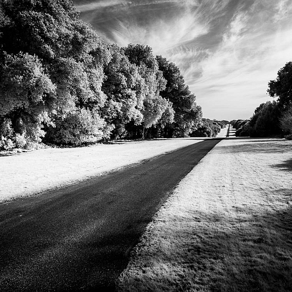 How to Convert a Camera to Infrared for Black and White Landscape Photography 2