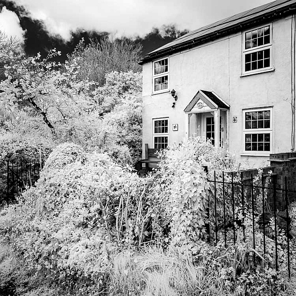 http://digital-photography-school.com/wp-content/uploads/2016/11/infrared-camera-conversions-5-600x600.jpg