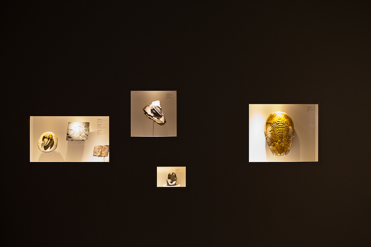 photographing museums and galleries