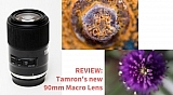 review-of-the-new-tamron-90mm-macro-lens