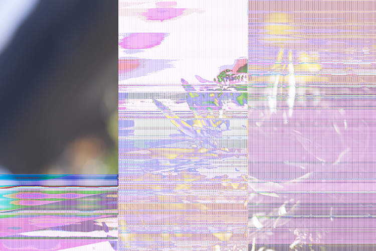 glitch-art-photography-01