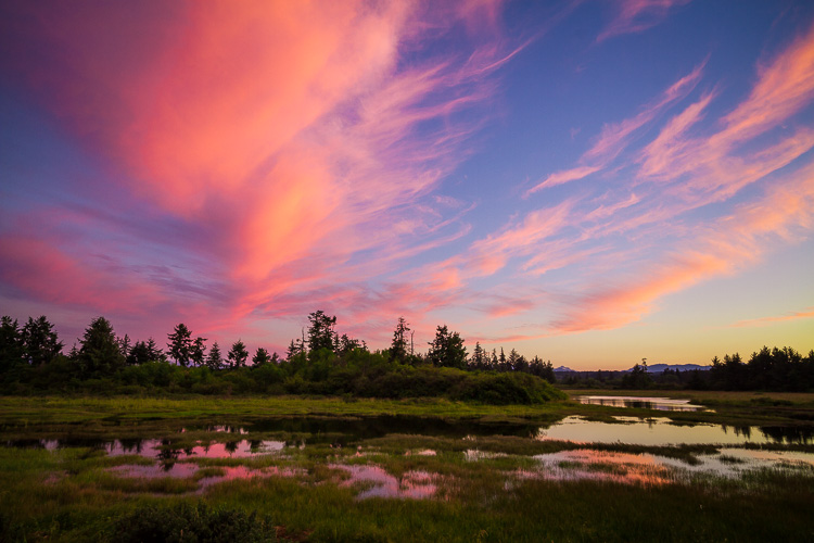 Estuary in Campbell River BC by Anne McKinnell - 5 Common Post-Processing Mistakes to Avoid