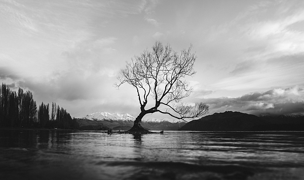 tips for making dramatic black and white landscape photos