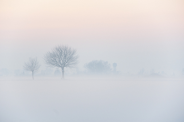 Walking in a Winter Wonderland - Winter Photography to Motivate you