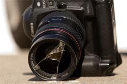 7 Digital Camera Predators And How To Keep Them At Bay